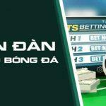 TOP 5 diễn đàn cá độ bóng đá lớn và uy tín nhất Việt Nam