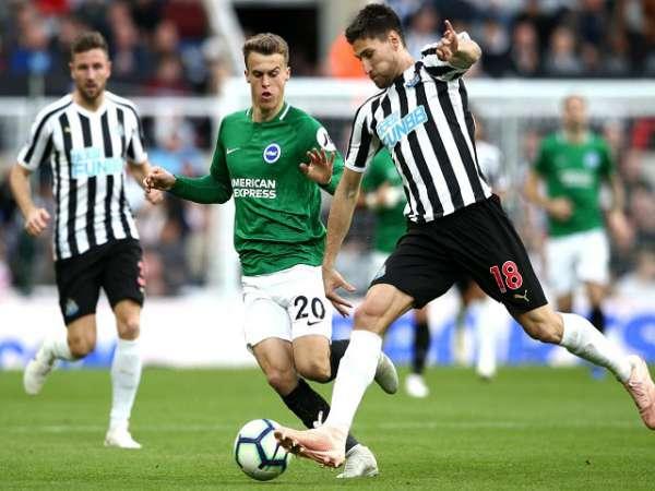 Nhận định Newcastle vs Brighton, 20h00 ngày 20/9, Ngoại hạng Anh