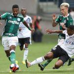 Soi kèo Botafogo vs Palmeiras, 07h30 ngày 8/10, Giải VĐQG Brazil