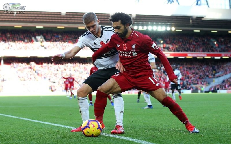 Link xem trực tiếp Fulham vs Liverpool 23h30 ngày 13/12